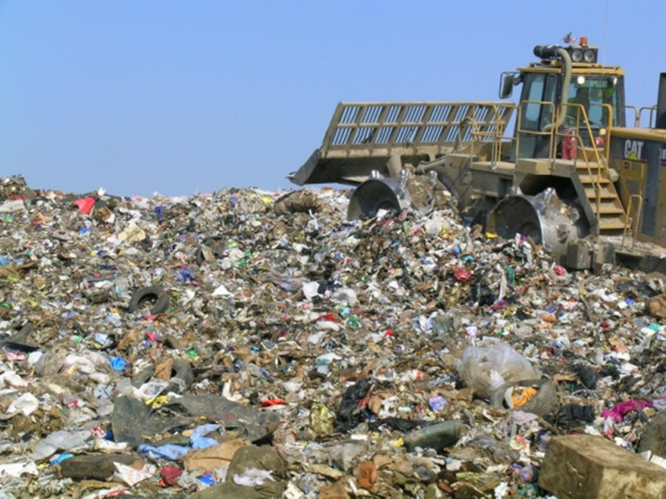 Очередная свалка мусора с котком