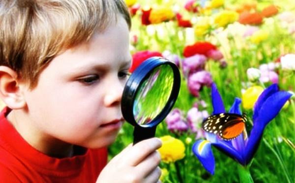 Отношение детей к экологии